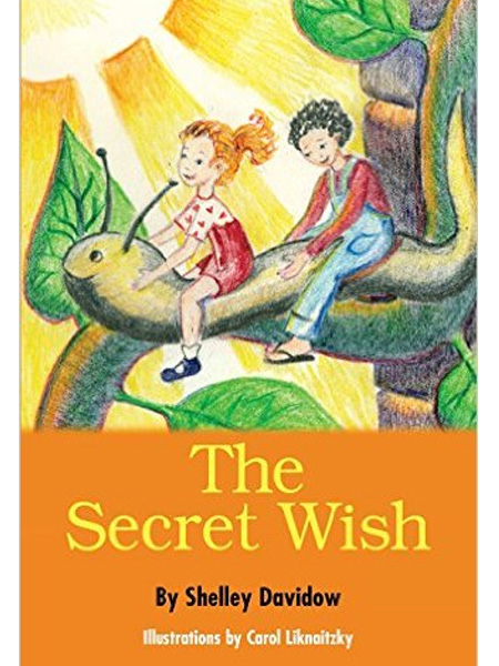 The-Secret-Wish-new